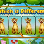 Which Is Different Animal
